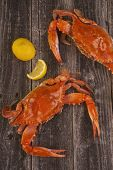 picture of cooked crab  - Fresh cooked crabs on a rustic background - JPG