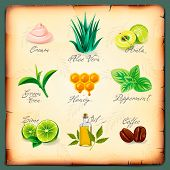 Set of natural cosmetics ingredients