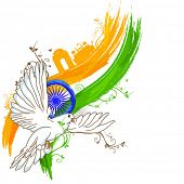 pic of indian independence day  - India at a glance - JPG