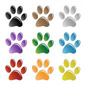 picture of paw-print  - Illustration paw prints dogs in different colors - JPG