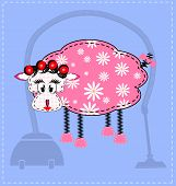 picture of budge  - blue background and an abstract sheep housewife - JPG