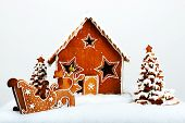 pic of gingerbread house  - The hand - JPG