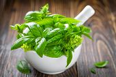 picture of crusher  - Fresh basil in a mortar on a wooden table - JPG