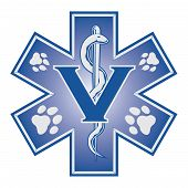 foto of vet  - Illustration of a veterinarian or vet emergency symbol - JPG