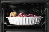 picture of safe haven  - A teddy bear sleeping in a casserole dish inside a baking oven - JPG