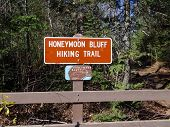 foto of bluff  - Sign in the Boundary Waters Canoe Area for the Honeymoon Bluff Hiking Trail - JPG