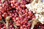 picture of red shallot  - Shallot - asia red onion in the market ** Note: Soft Focus at 100%, best at smaller sizes - JPG