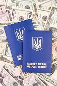 pic of passport cover  - Ukrainian passport - JPG