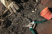 image of loam  - compost with garden secateurs and a hand - JPG