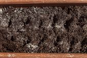 image of planters  - soil with seed in a planter closeup - JPG