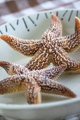 picture of edible  - Boiled edible starfish on the plate on a table - JPG