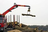 pic of logging truck  - A truck with a crane arm will  load logs - JPG