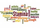 Stamina Is Staying Power Or Enduring Strength, Word Cloud 3 poster