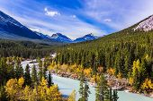 Indian summer in Canada. Abraham Lake is the most beautiful lake in the Rockies. Dense forests cover poster