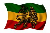 image of rastaman  - Rastafarian flag with lion  - JPG