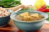 pic of paneer  - Indian Palak Paneer with rice and fresh ingredients - JPG