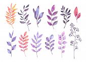 Hand Drawn Watercolor Illustrations. Autumn Botanical Clipart. Set Of Purple Leaves, Herbs And Branc poster