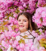 Girl Enjoying Floral Aroma. Kid On Pink Flowers Sakura Tree Background. Child Enjoy Life Without All poster