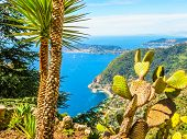Aerial View Of The Mediterranean Coastline From The Top Of The Eze Village. Provence, France poster