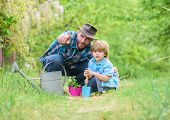 Take Care Of Plants. Boy And Father In Nature With Watering Can. Gardening Tools. Planting Flowers.  poster