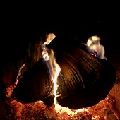 Beautiful Flame Brown Wood Dark Black Coal On Bright Yellow Fire Inside Metal Brazier. Flame Burning poster
