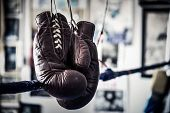 An Old Pair Of Boxing Gloves Hanging On The Ropes In A Boxing Gym Ring poster
