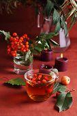 Постер, плакат: Травяной чай с осени Берри стиль жизни