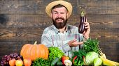 Organic Pest Control. Man With Beard Wooden Background. Farmer With Organic Vegetables. Excellent Qu poster
