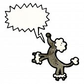 cartoon poodle barking