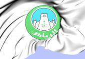 image of riyadh  - Riyadh Coat of Arms Saudi Arabia - JPG