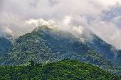 stock photo of negro  - Mountain resort in Negros Occidental, Philippines. Fog