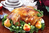 stock photo of poultry  - Thanksgiving or Christmas turkey dinner with fresh pears grapes and parsley - JPG
