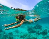 stock photo of sky diving  - Young lady snorkeling in a clear tropical sea - JPG
