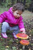 picture of face-fungus  - Little girl in the forest fly agaric finger touches - JPG
