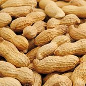 stock photo of groundnuts  - groundnut background - JPG