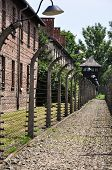 stock photo of auschwitz  - Corridor protected with fences with a barbed wire in Auschwitz - JPG