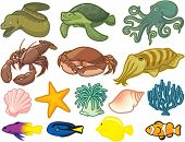 foto of creatures  - Vector Illustration of Creatures found in the sea - JPG
