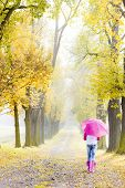 stock photo of woman boots  - woman wearing rubber boots with umbrella in autumnal alley - JPG