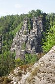 Постер, плакат: Saxon Switzerland