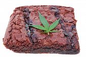 Постер, плакат: Cooking with Cannibals Genuine Medical Marijuana Chocolate Brownie aka medical cannabis brownies