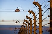 stock photo of hitler  - Fence with wire and lamp around  concentration camp - JPG