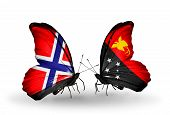 foto of papua new guinea  - Two butterflies with flags on wings as symbol of relations Norway and Papua New Guinea - JPG