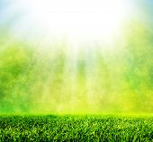 foto of horizon  - Green spring grass against natural nature blur - JPG