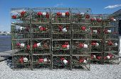 picture of crab-cakes  - Crab traps sitting on the dock waiting for the opening of the blue crab season - JPG