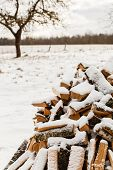 pic of firewood  - Stacked chopped firewood covered by snow - JPG