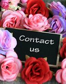 pic of soliciting  - contact us sign - JPG
