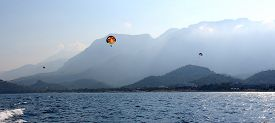 picture of parasailing  - Parasailing in a blue sky near sea beach  - JPG