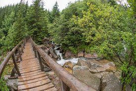 foto of distort  - View of wooden bridge over the river  - JPG